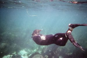 Las 9 mejores máscaras de Snorkel
